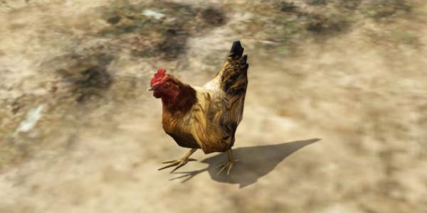 Le personnage principale de GTA 5 transformé en poulet