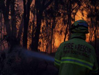 Les incendies en Australie, au moins 3 morts: déclaré un état d'alerte