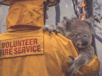 Méga-feu en Australie