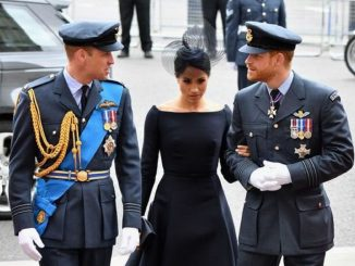 prince william annonce harry meghan