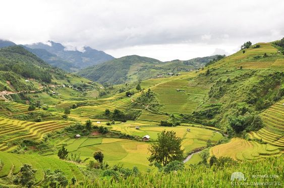 paysages vietnam
