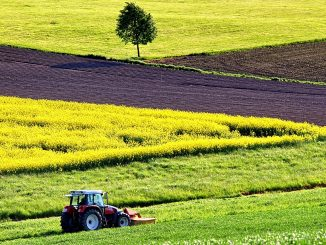 comptabilité agricole