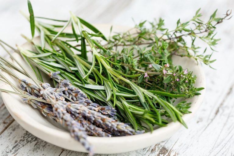 Produits préparation cuisine Provence