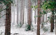 Grand froid dans le nord: les migrants en situation «d'extrême urgence», alertent des associations