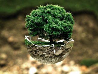 Journée de la Terre 2021 : comment la préserver ?