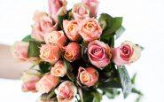 roses 4112951 1280