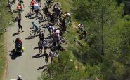 Horreur au Tour de France, maxi chute dans la descente : plusieurs coureurs s'envolent