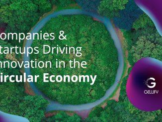 GELLIFY, le rapport sur l'économie circulaire