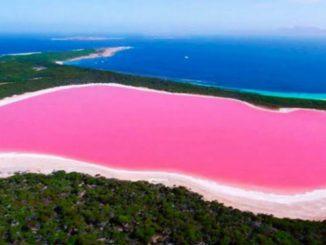 L'eau rose mystérieuse du lac Hillier en Australie
