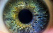 color ojos 0